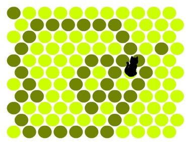 Snapshot 2009-07-10 18-39-42