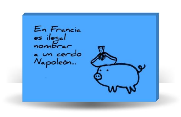 En Francia es ilegal nombrar a un cerdo Napoleón